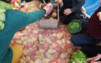 Le travail sur les légumes continue pour les plus jeunes !